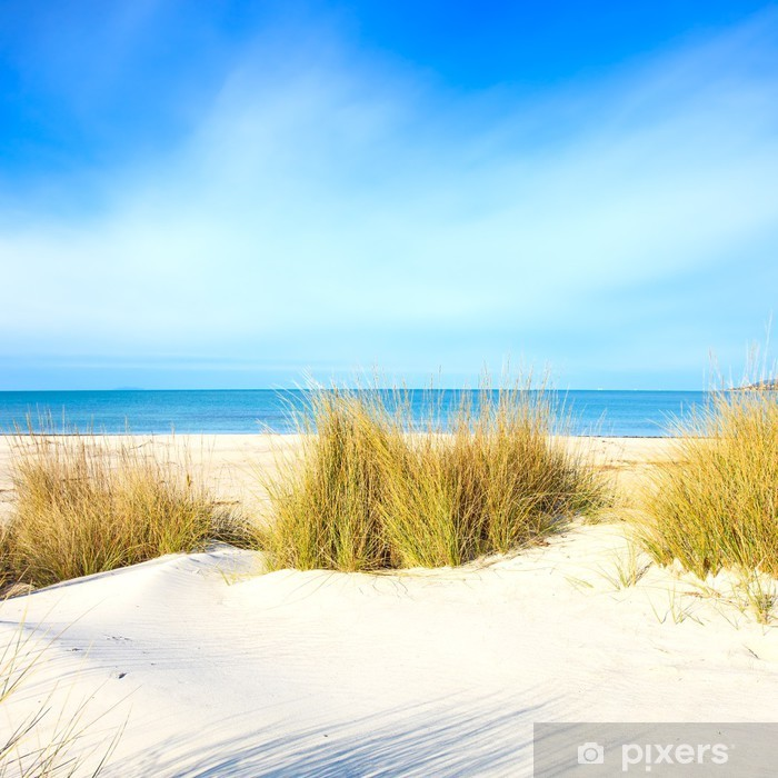 Beach House At The Dunes: Grass On A White Sand Dunes Beach, Ocean And Sky Wall