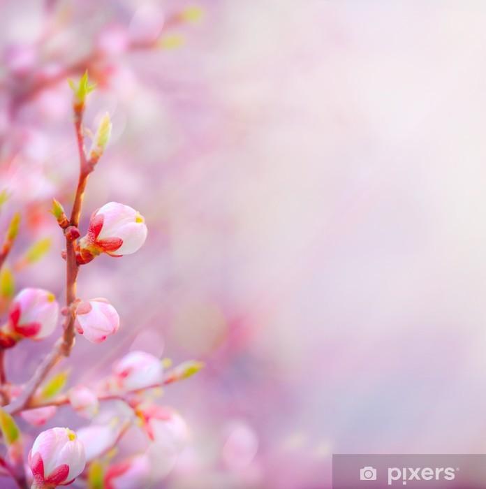 Vinylová fototapeta Art Krásné jarní kvetoucí strom na obloze na pozadí - Vinylová fototapeta