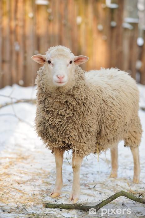 Pixerstick Sticker Sheep - Zoogdieren