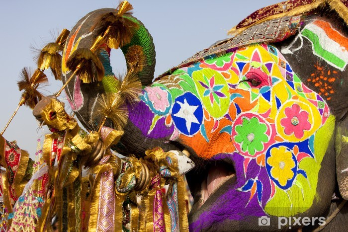 Decorated elephant at the elephant festival in Jaipur. Vinyl Wall Mural - Asia