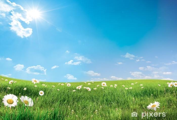 Fototapeta zmywalna Krajobraz z kwiatami - Tematy