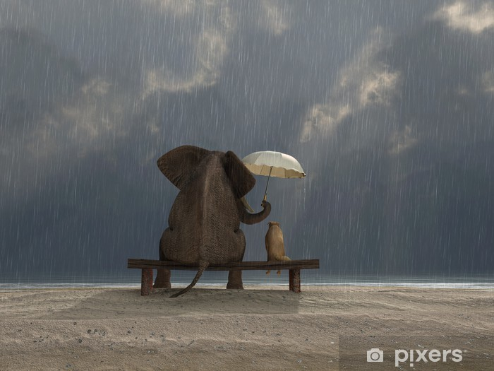 Naklejka Pixerstick Słoń i pies siedzieć w deszczu - Życie