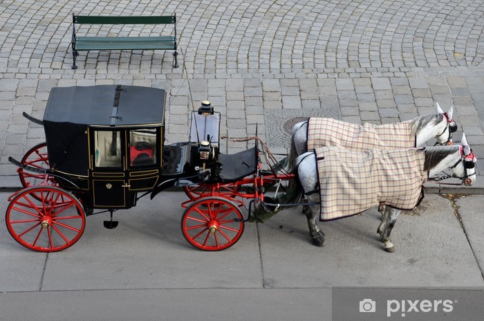 Papier peint vinyle Les touristes noir et rouge calèche - Vienne Autriche - Villes européennes