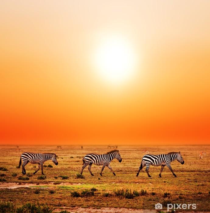 Vinyl Fotobehang Zebra kudde op de Afrikaanse savanne bij zonsondergang. Safari in Serengeti - Thema's