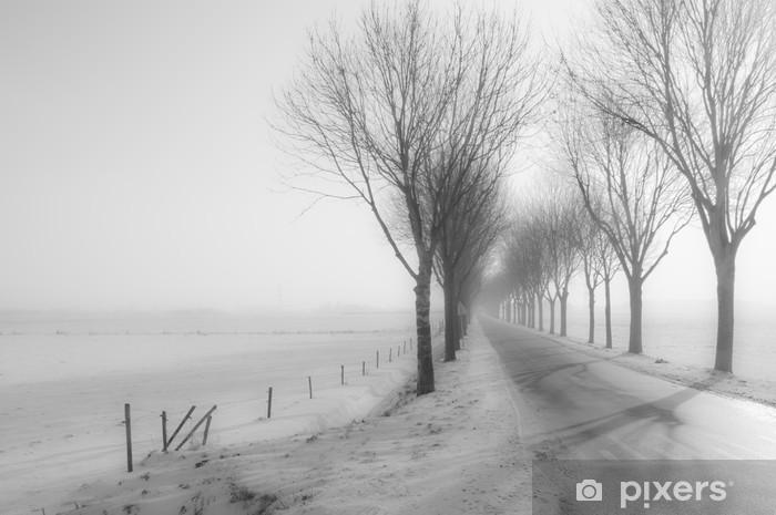 Naklejka Pixerstick Tall nagie drzewa oprócz wiejskiej drodze w zimie - Pory roku