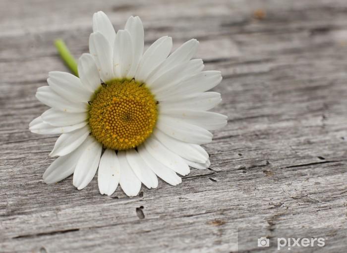 Sticker Pixerstick Paquerette - Fleurs