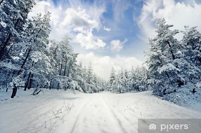 Vinylová fototapeta Zimní scény: silnici a les s jinovatka na stromech - Vinylová fototapeta