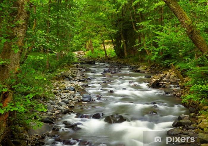 Fototapeta winylowa Górskiej rzeki w lesie - Cuda natury