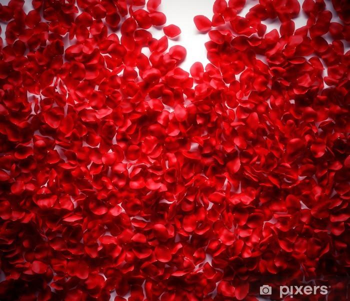 Naklejka Pixerstick Płatki róż na białym tle ziemi - Szczęście