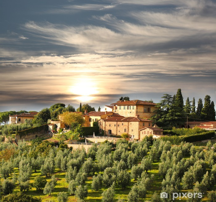 Luxury villa in Tuscany, famous vineyard in Italy Vinyl Wall Mural - Themes