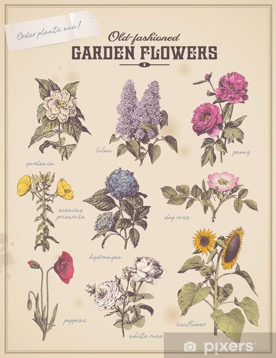 Fototapeta winylowa Kwiaciarnia afisz z 9 klasycznych kwiatów ogrodowych -