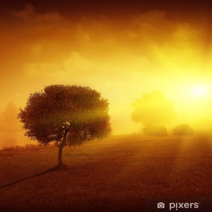 Poster Paysage avec arbre solitaire au coucher du soleil. - Saisons