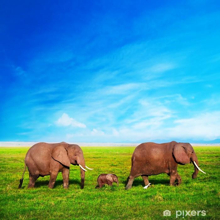 Naklejka Pixerstick Słonie rodzina na sawannie. Safari w Amboseli, Kenia, Afryka - Tematy