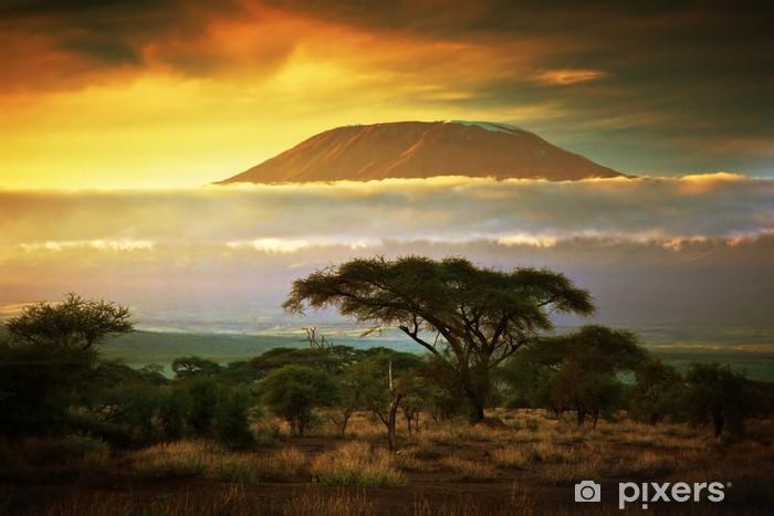 Papier peint lavable Kilimandjaro. Savanna à Amboseli, au Kenya - Thèmes