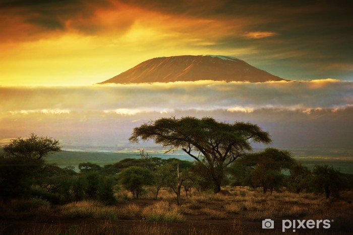 Pixerstick Sticker Kilimanjaro. Savanne in Amboseli, Kenia - Thema's