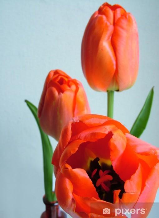 Naklejka Pixerstick Tulipany - Tematy