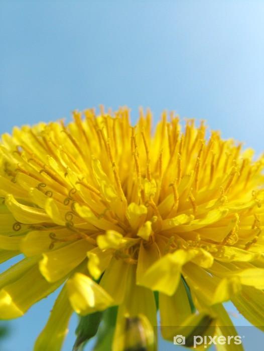 löwenzahn Pixerstick Sticker - Flowers