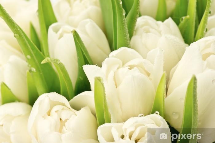 Papier peint vinyle Tulipany - Thèmes