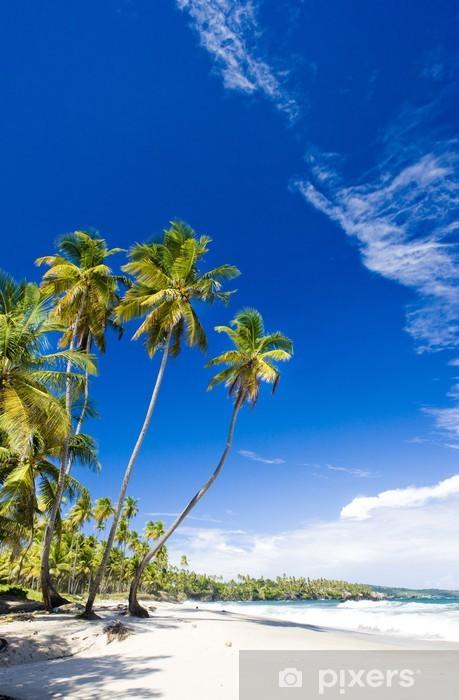 Vinil Duvar Resmi Cumana Bay, Trinidad - Amerika
