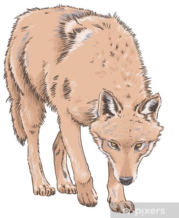 Nálepka Pixerstick Vlk - Savci