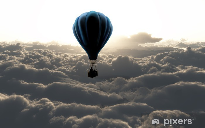 Hot air balloon in the sky Vinyl Wall Mural - Styles