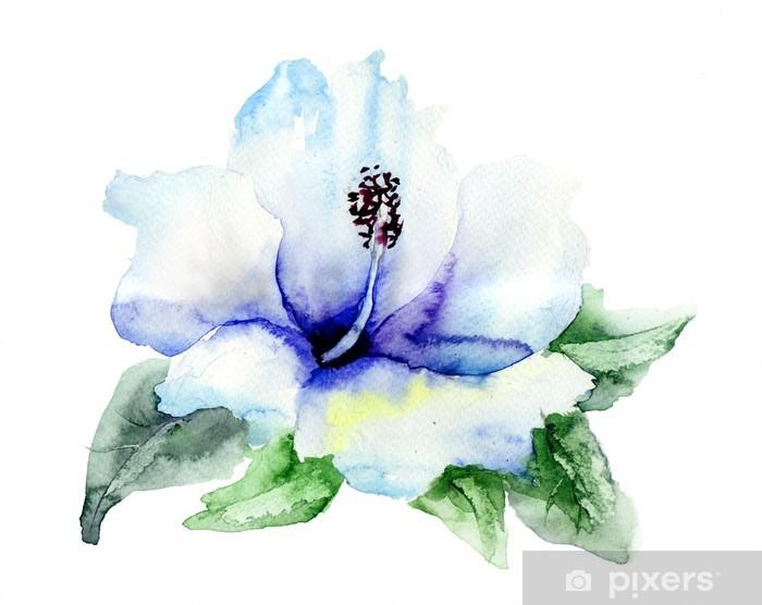 Vinyl-Fototapete Blauer Hibiskus Blume - Blumen