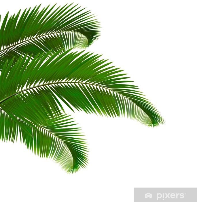 Fotomural Hojas de palmera sobre fondo blanco. Ilustración