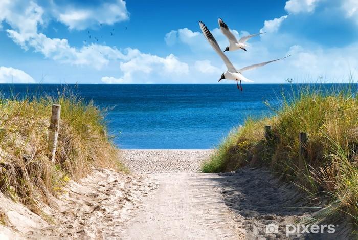 Papier Peint Autocollant Côte baltique - Mer et océan