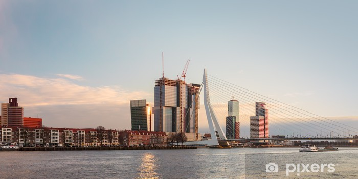 panorama of the rotterdam skyline in the netherlands wall mural