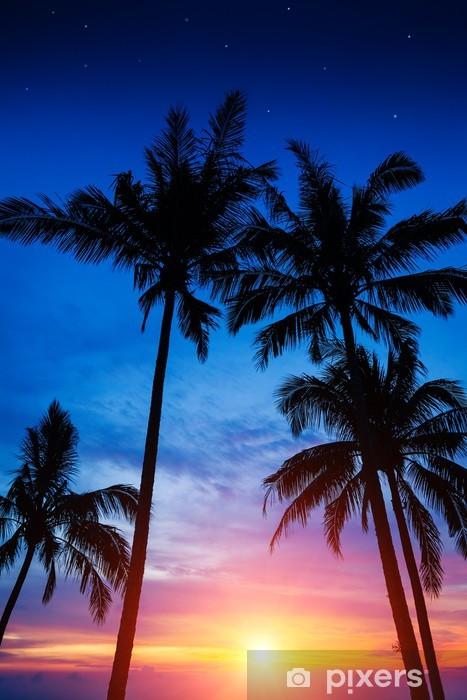 Vinilo para Nevera Palmeras, puesta del sol y el cielo estrellado -