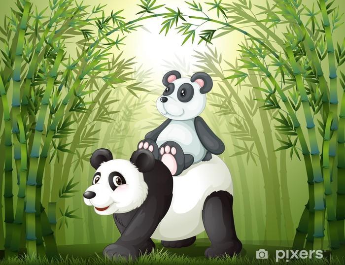 Fototapeta winylowa Dwie pandy wewnątrz bambusowym lesie - Dla ucznia
