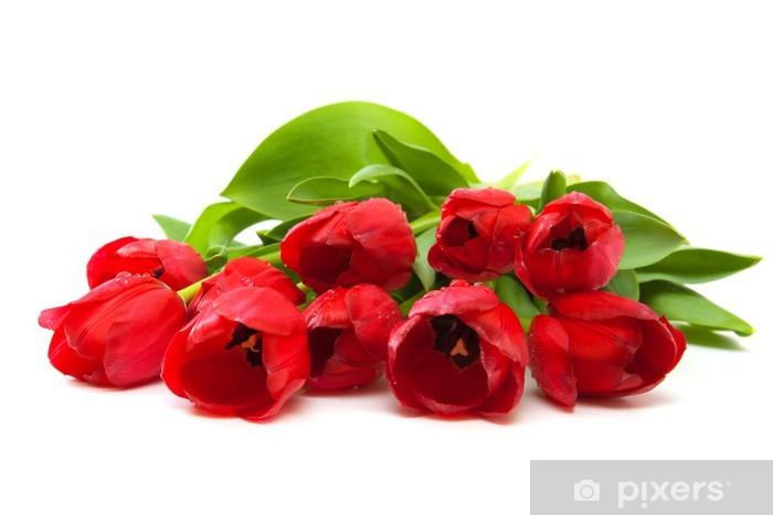 Nálepka Pixerstick Červené tulipány - Slavnosti