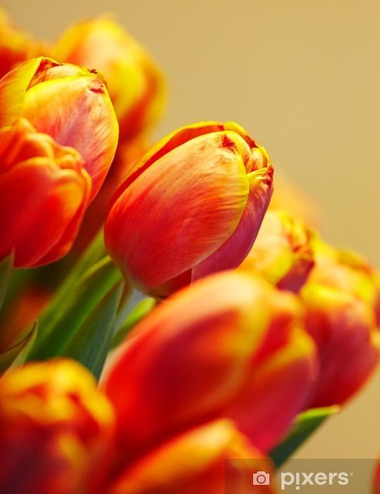 Vinilo Pixerstick Ramo de tulipanes de color naranja sobre fondo del mismo color - Temas