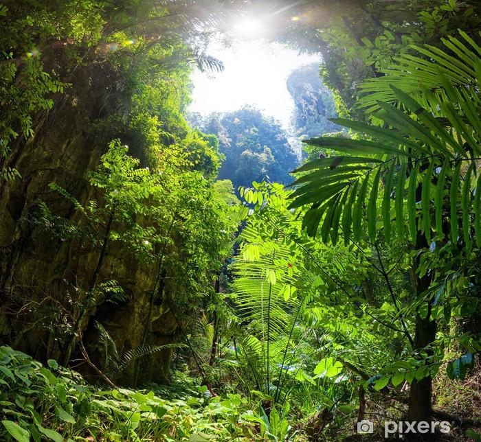 Papier peint vinyle Jungle forest - Thèmes