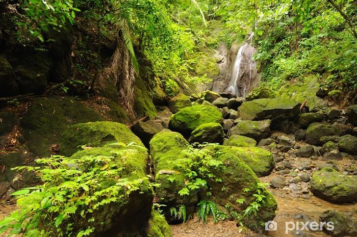 Naklejka Pixerstick Kolumbijskiej dżungli Darien dziki - Dżungla