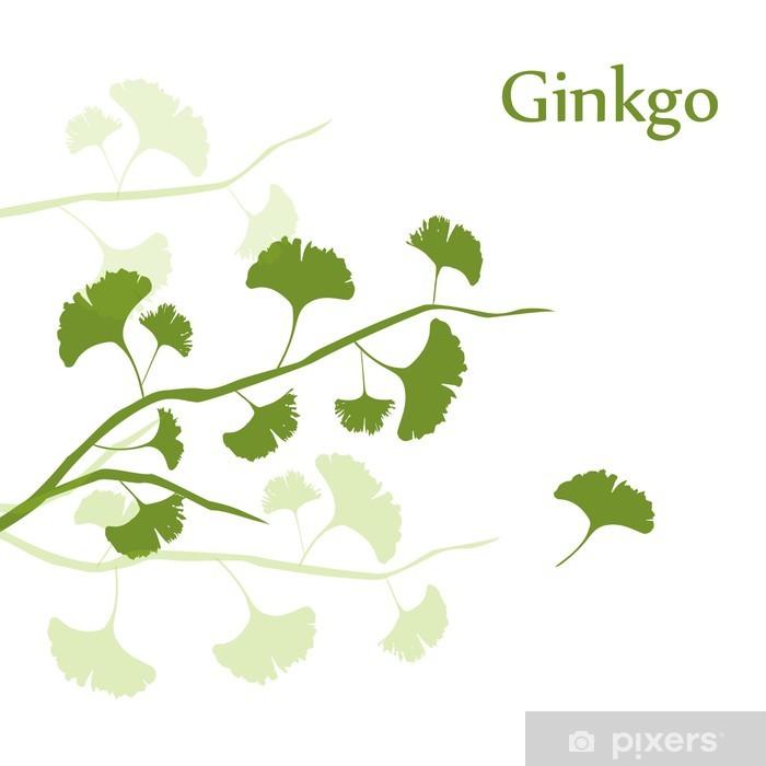 Plakát Ginkgo pozadí - Zdraví a medicína