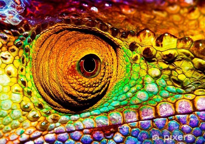 Vinilo Pixerstick Reptil ojo - Temas