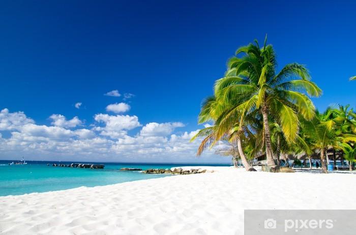 Zelfklevend Fotobehang Tropisch beach - Palmbomen