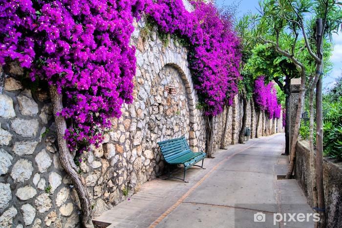 Abwaschbare Fototapete Eine kleine Straße entlang einer alten Mauer mit purpurroten Blumen - Europa