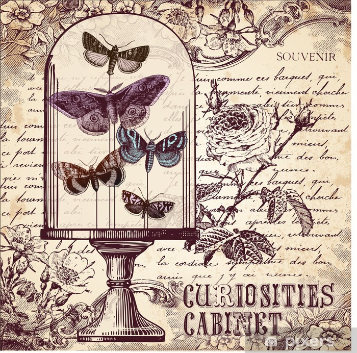 The Curiosities Cabinet Poster - Styles