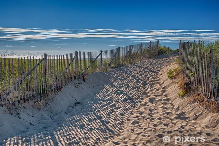 Fototapeta winylowa Lato na Cape Cod - wejście do Race Point Beach - Ameryka