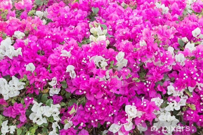 Sticker Pixerstick Vignes de bougainvillées - Fleurs