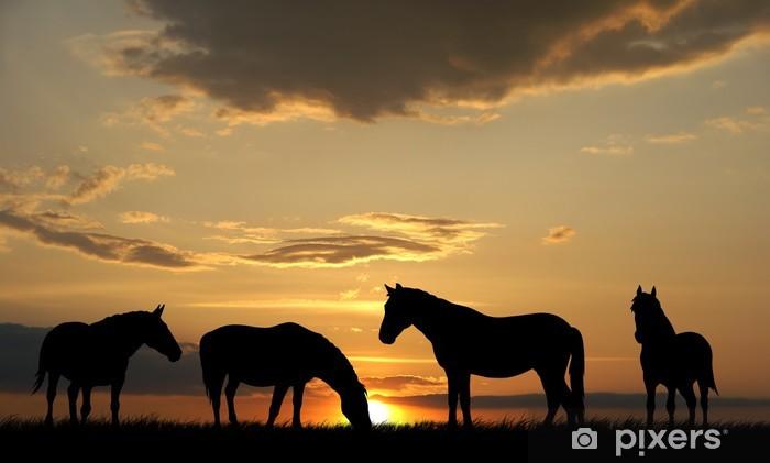 Fototapeta winylowa Konie - Tematy