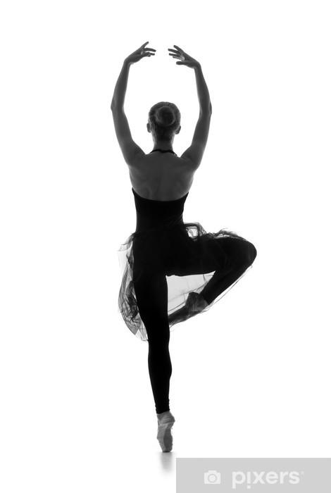 dac35c99c56a Dekor Svart och vitt spår av unga vackra balettdansös • Pixers® - Vi ...