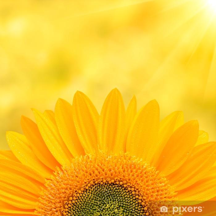 Sunflower Background Pixerstick Sticker - Themes