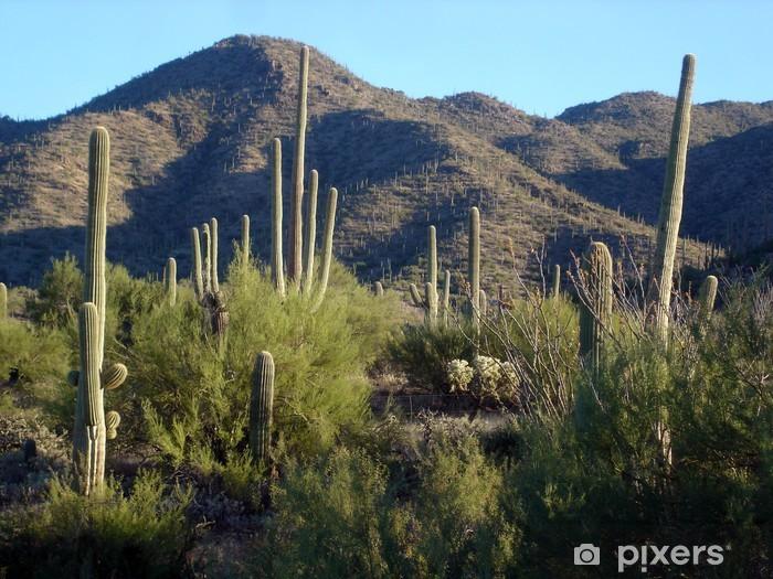 cacti Pixerstick Sticker - Deserts