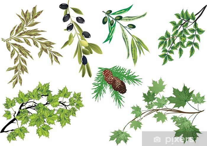 Sticker Pixerstick Ensemble des branches d'arbres isolés sur fond blanc - Arbres