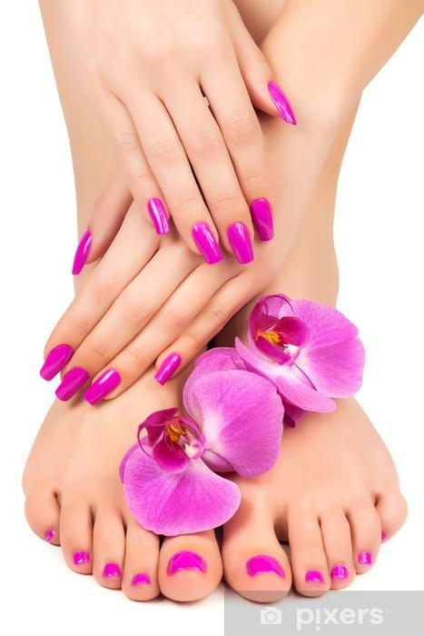 Fototapeta winylowa Różowy manicure i pedicure z kwiat orchidei - Przeznaczenia