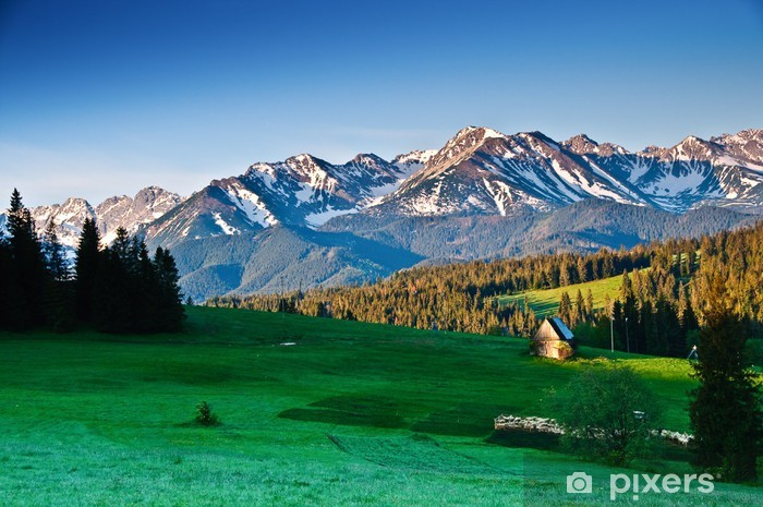 Polish Tatra mountains panoram in the morning Vinyl Wall Mural - Themes
