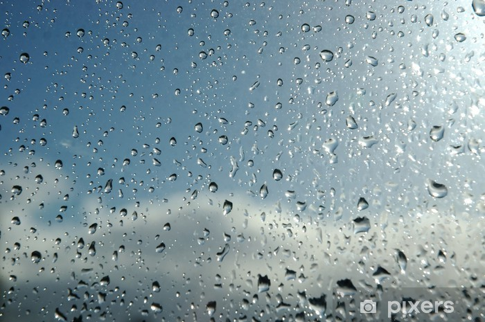 Papier peint vinyle Gouttes de pluie dublin - Textures